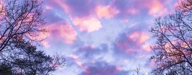 桃红色和紫色极性同温层的云彩,在冬天有时很少发生的天空的一个作用 免版税库存照片