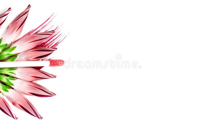 桃红色嘴唇光泽和花在白色隔绝了背景 Ð ¡ 免版税库存图片