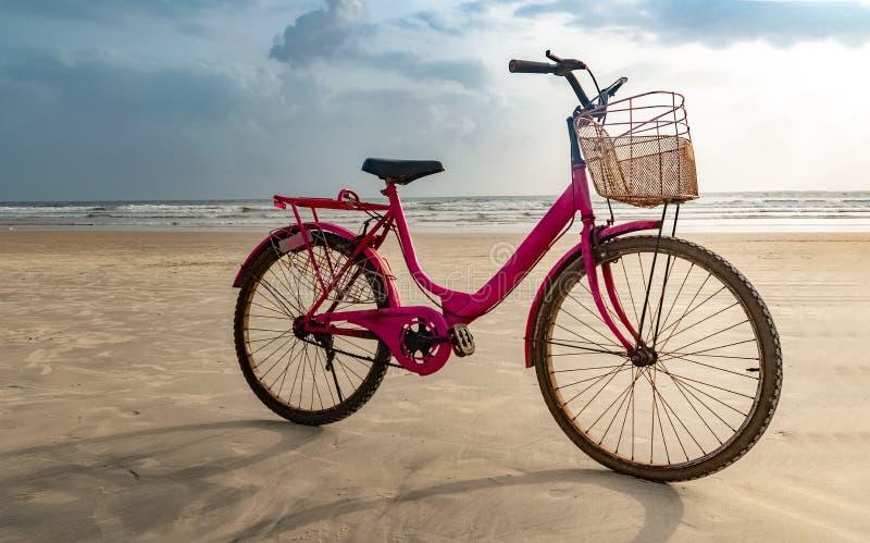 桃红色在海滩上色了老妇人自行车停放在循环以后 乐趣在海滩填装健康活动和必需做 免版税库存图片