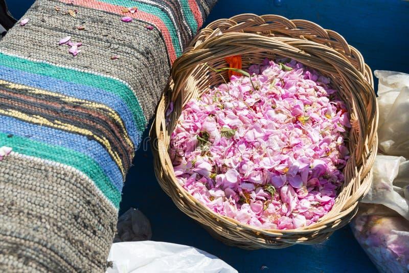 桃红色在篮子的玫瑰开花 库存照片