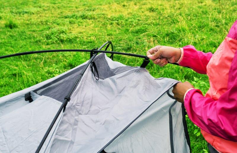 桃红色夹克的收集旅游帐篷的女孩的手 免版税库存照片