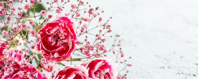 桃红色康乃馨花束在轻的绿松石木背景的 库存图片