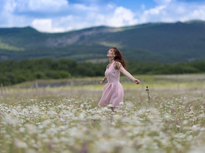 桃红色无袖的礼服的少妇在春黄菊草甸  免版税库存照片
