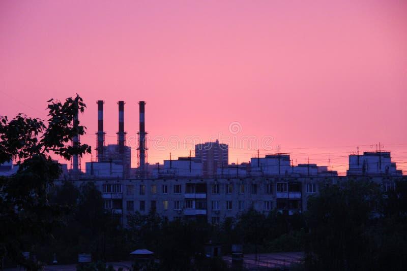 桃红色日落 植物,在日落的城市地平线的多层的大厦、树和管子屋顶  免版税库存图片