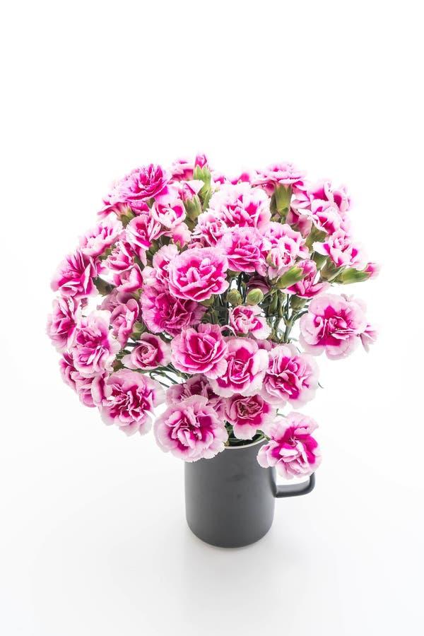 桃红色春天花 库存图片