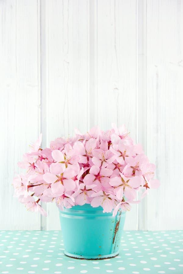 桃红色樱花花花束 图库摄影