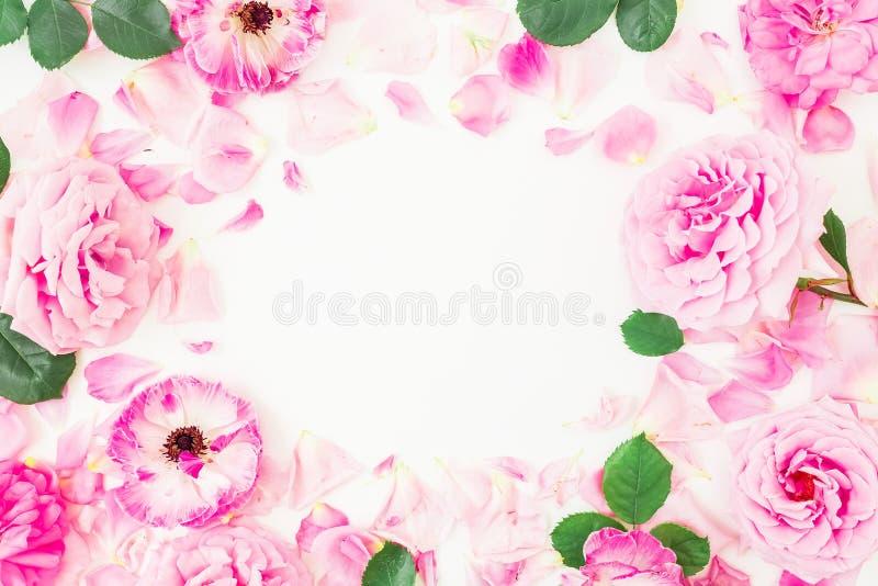 桃红色毛茛属圆的框架开花,玫瑰、瓣和叶子在白色背景 花卉生活方式构成 平的位置,上面 免版税库存图片