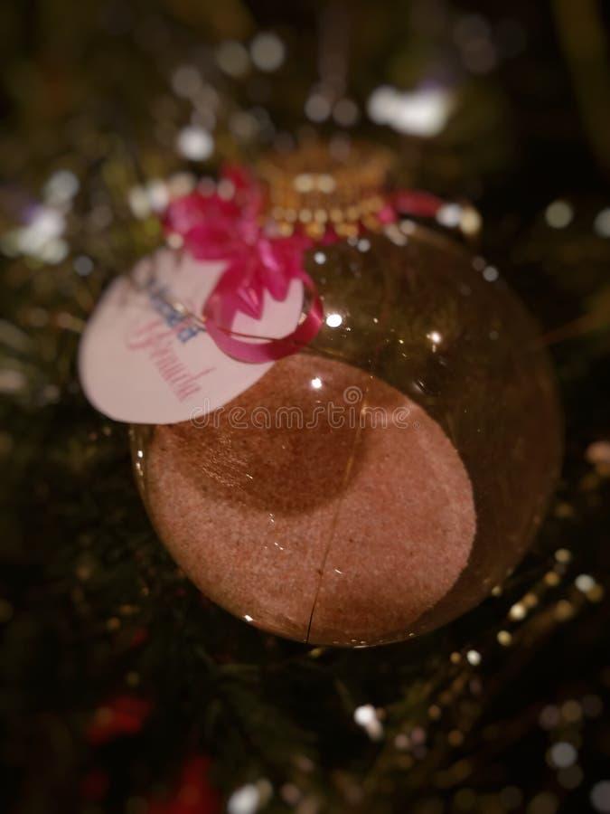 桃红色沙子,圣诞节,百慕大 库存图片