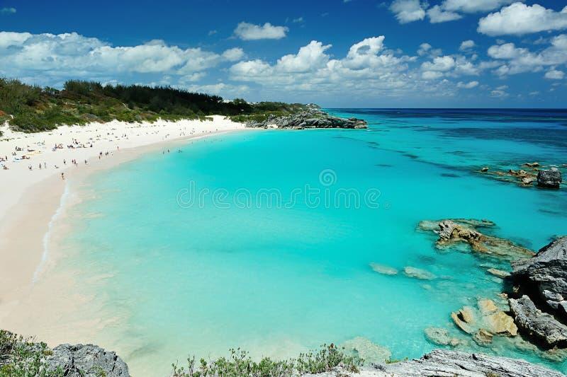 桃红色海滩在百慕大海岛 免版税库存图片