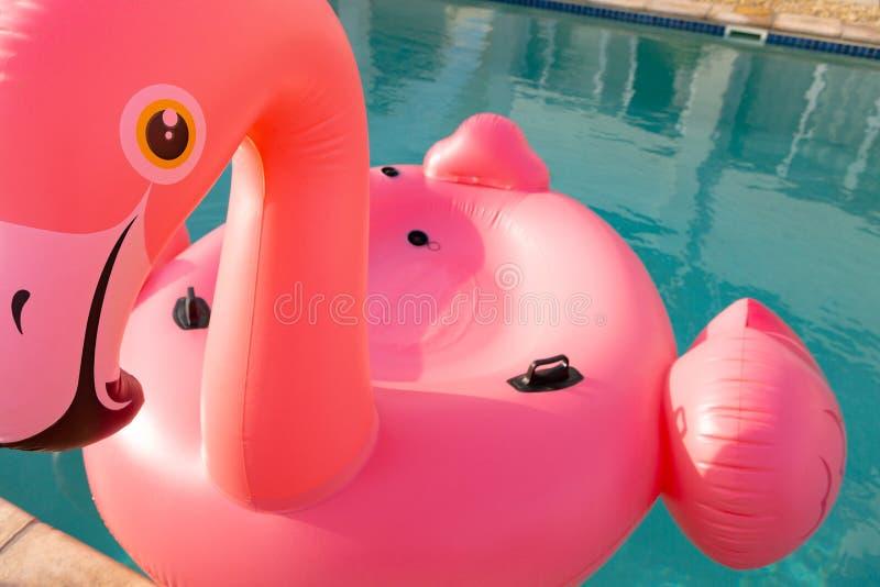 桃红色漂浮在游泳场的火鸟鸟形状可膨胀的管 免版税库存图片