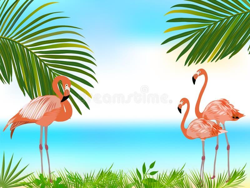 桃红色火鸟,棕榈树热带密林背景 向量例证