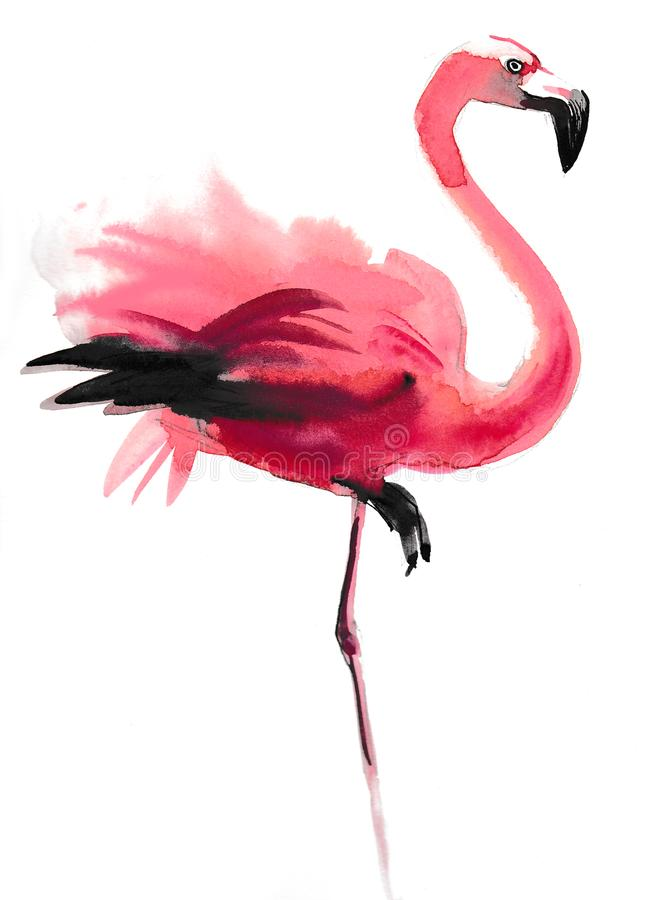 桃红色火鸟 皇族释放例证