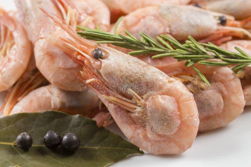 桃红色煮沸的虾大虾完全地用香料,特写镜头 小海螯虾海鲜饮食 库存照片