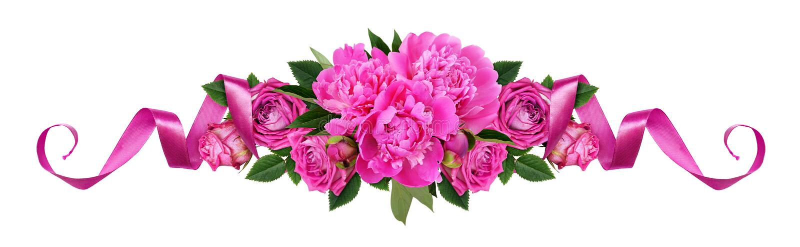 桃红色牡丹、玫瑰色花和缎丝带在线花卉ar 免版税库存照片