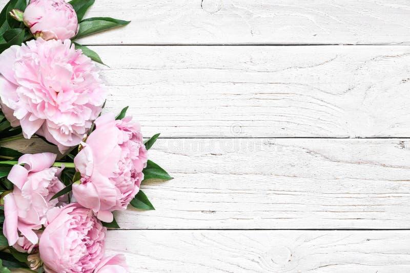 桃红色牡丹开花在与拷贝空间的白色木桌 背景高雅重点邀请浪漫符号温暖的婚礼 平的位置 免版税库存照片