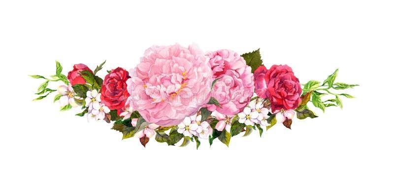 桃红色牡丹花、玫瑰、白色苹果或者樱桃开花 在葡萄酒样式的水彩 向量例证