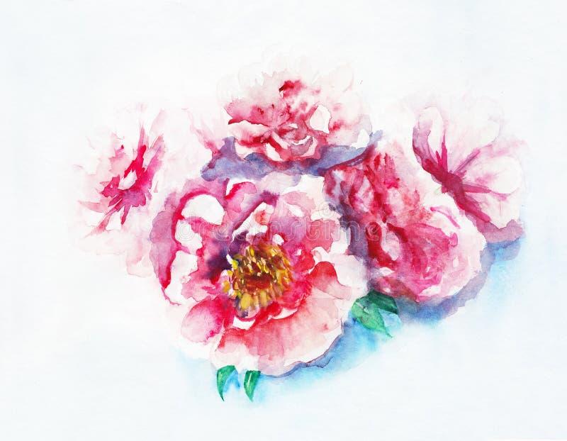 桃红色牡丹花束 水彩手淹没例证 皇族释放例证