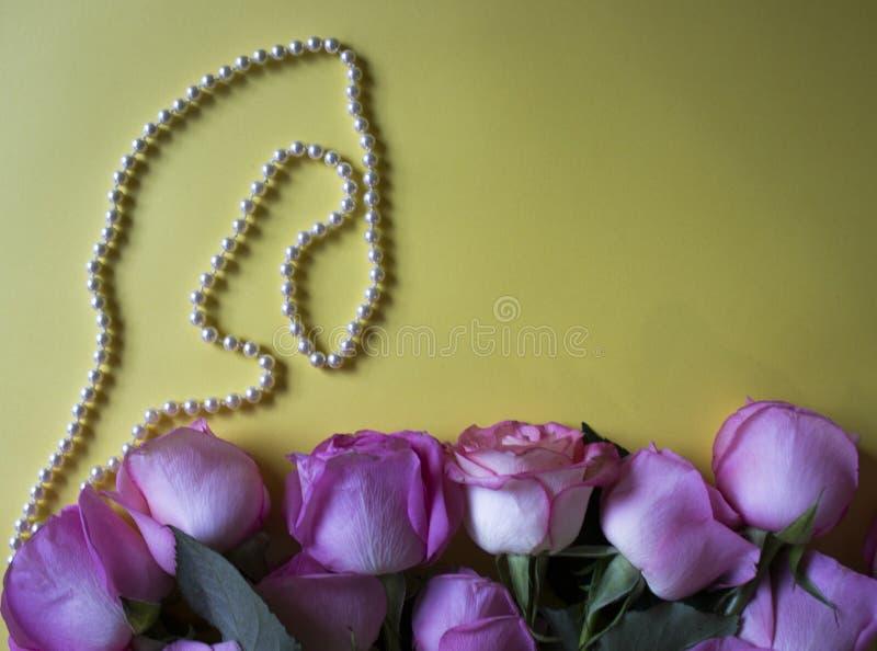 桃红色玫瑰和珍珠项链在黄色背景 重点 图库摄影