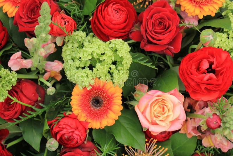桃红色玫瑰和红色camelia 库存照片