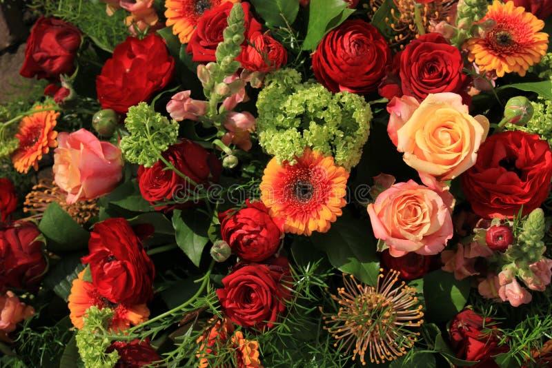 桃红色玫瑰和红色camelia 免版税库存照片