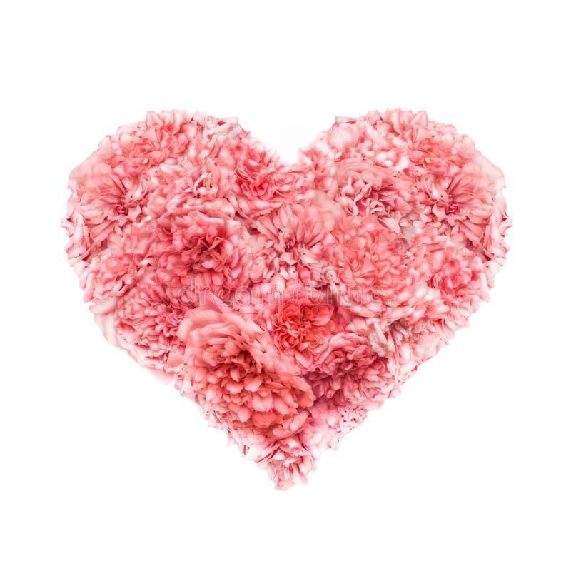 桃红色玫瑰情人节的心脏 免版税库存照片