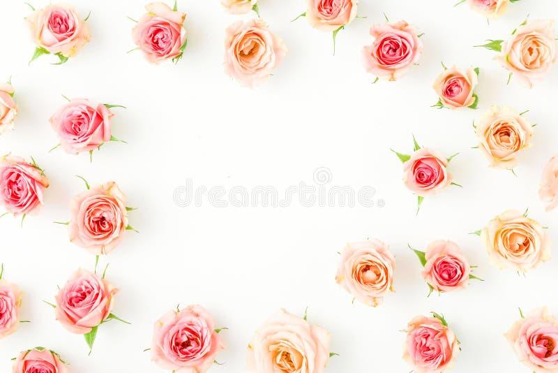 桃红色玫瑰框架在白色背景的 平的位置 库存照片