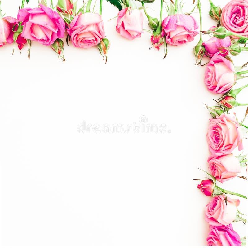 桃红色玫瑰的花卉边界样式在白色背景的 平的位置,顶视图 库存照片