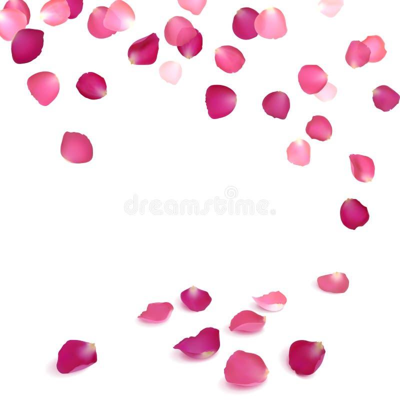 桃红色玫瑰的落的瓣 库存例证