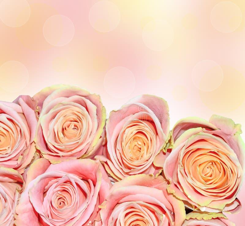 桃红色玫瑰美丽的花束-欢乐花卉背景 免版税库存图片