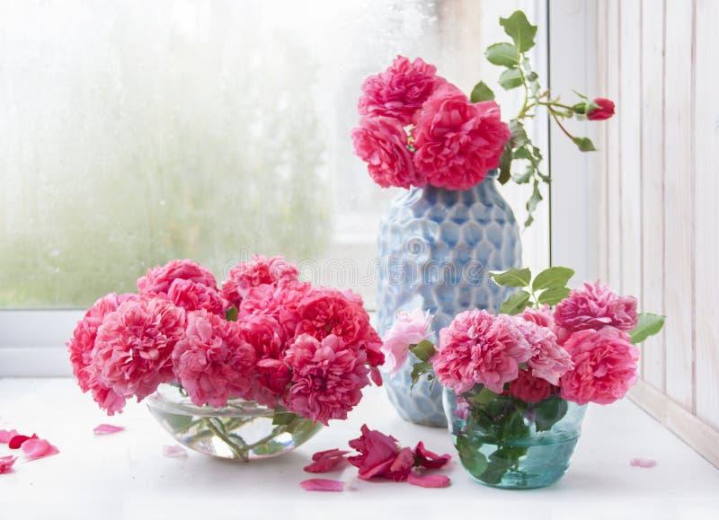 桃红色玫瑰花束用不同的花瓶 库存图片