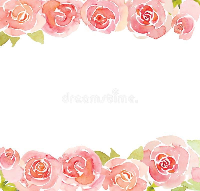 桃红色玫瑰花水彩背景 库存例证