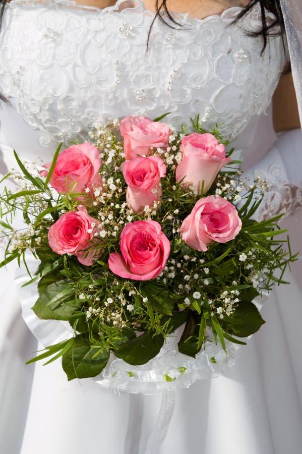 桃红色玫瑰 免版税库存照片