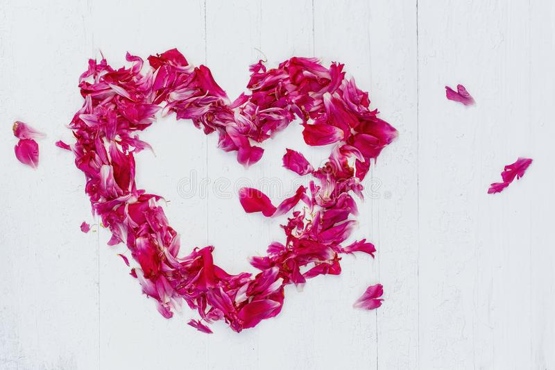 桃红色瓣的心脏 免版税库存照片