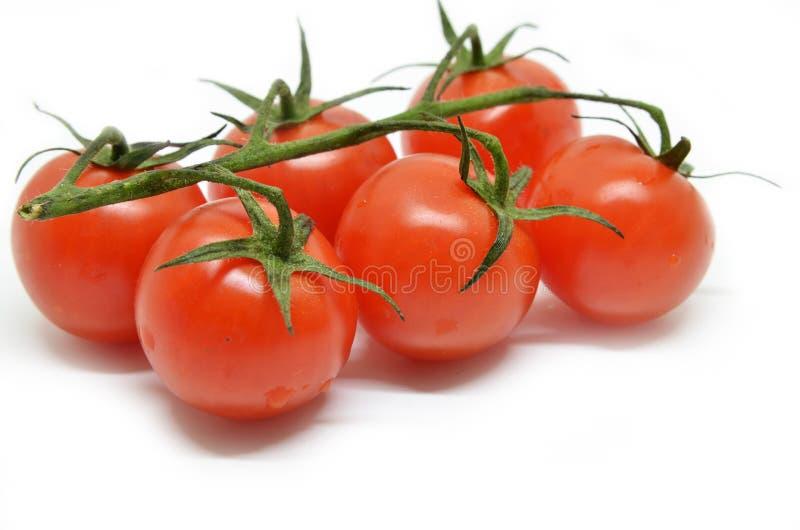 桃红色的蕃茄 库存照片