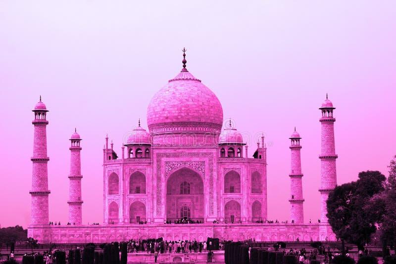 桃红色的,阿格拉,北方邦,印度泰姬陵 免版税库存照片