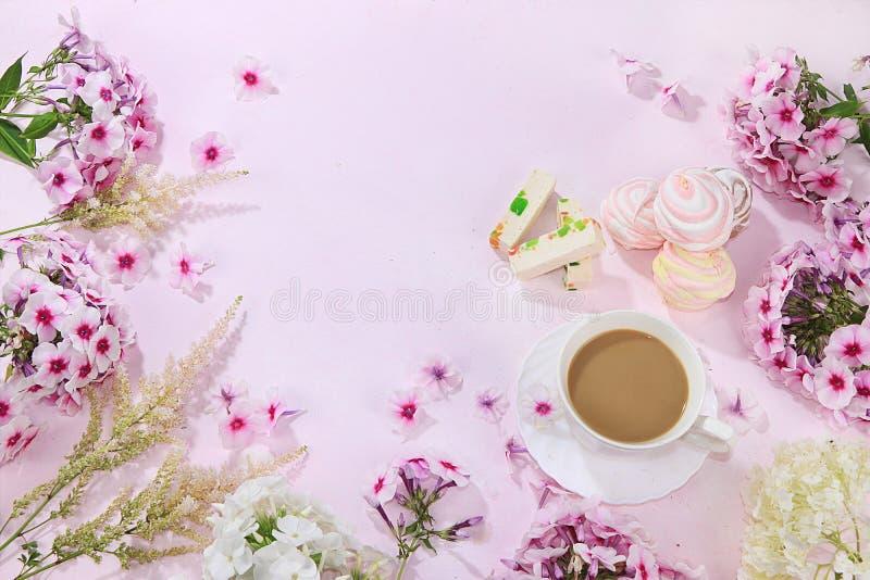 桃红色福禄考、与pastilla在一张木桌上,与地方的顶视图的咖啡和蛋白软糖五颜六色的花文本的,平展 免版税库存照片
