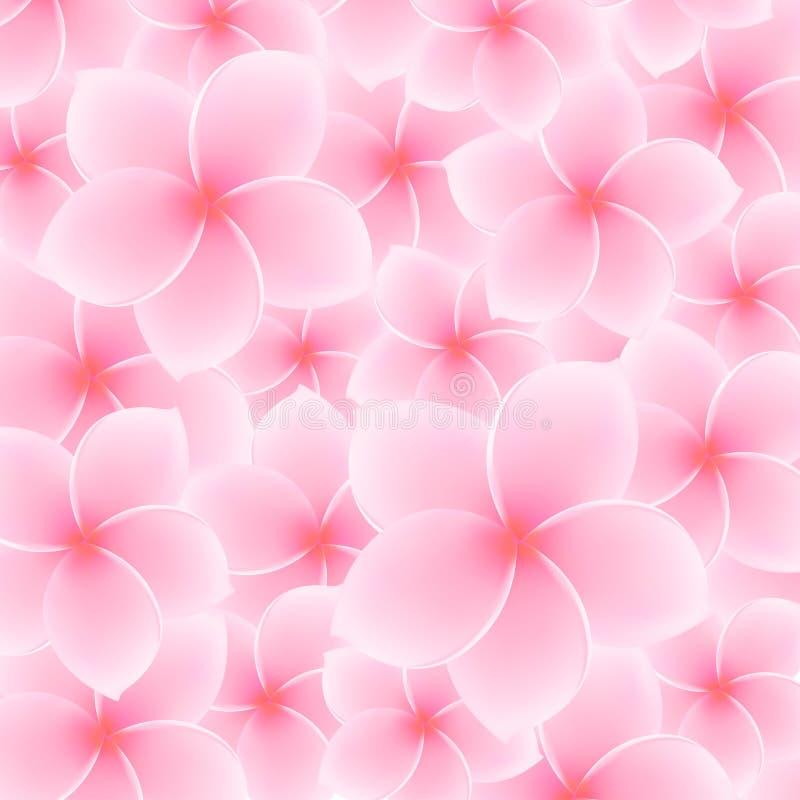 桃红色羽毛,赤素馨花样式(花) 向量例证