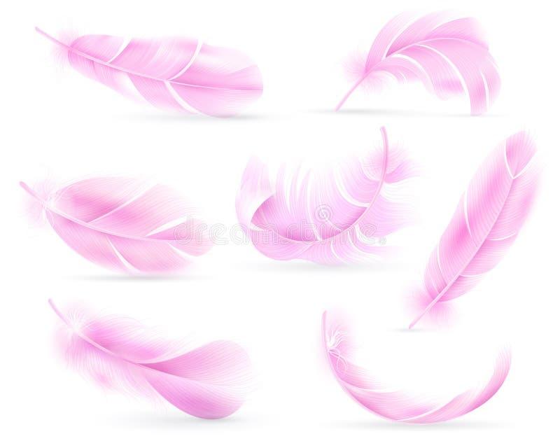 桃红色羽毛 鸟或天使羽毛,鸟全身羽毛 飞行的绒毛,落的蓬松旋转的火鸟羽毛 ?? 向量例证
