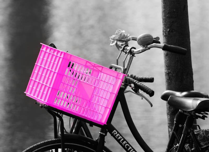 桃红色自行车条板箱 免版税库存照片