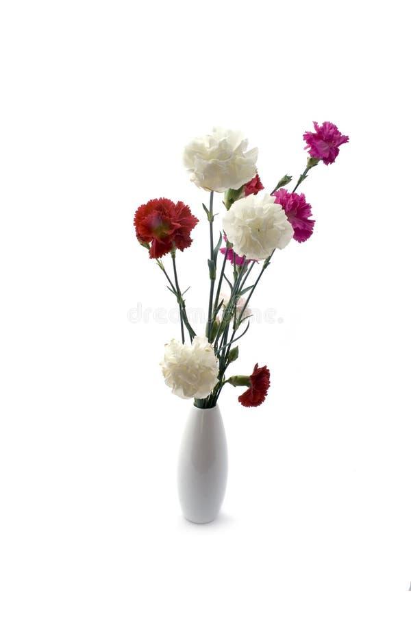 桃红色花瓶 库存照片