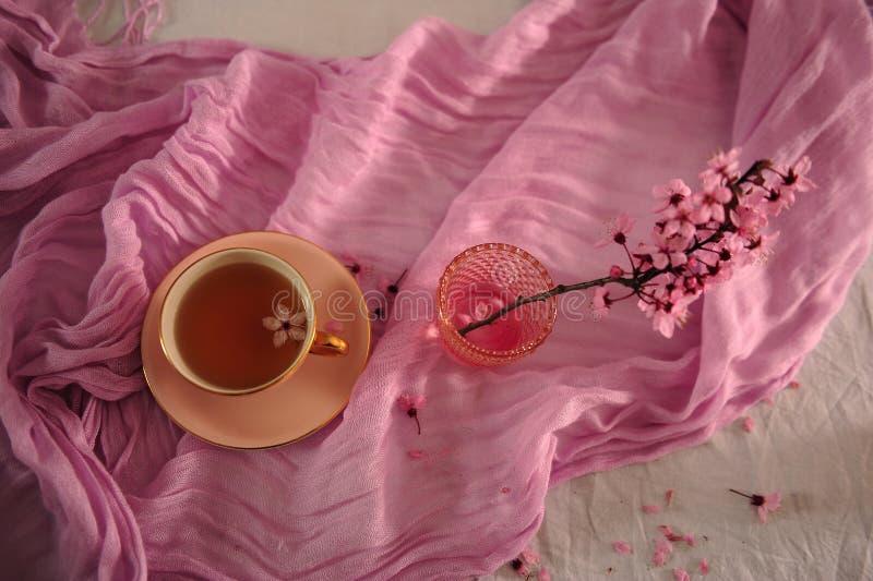 桃红色茶 免版税库存图片