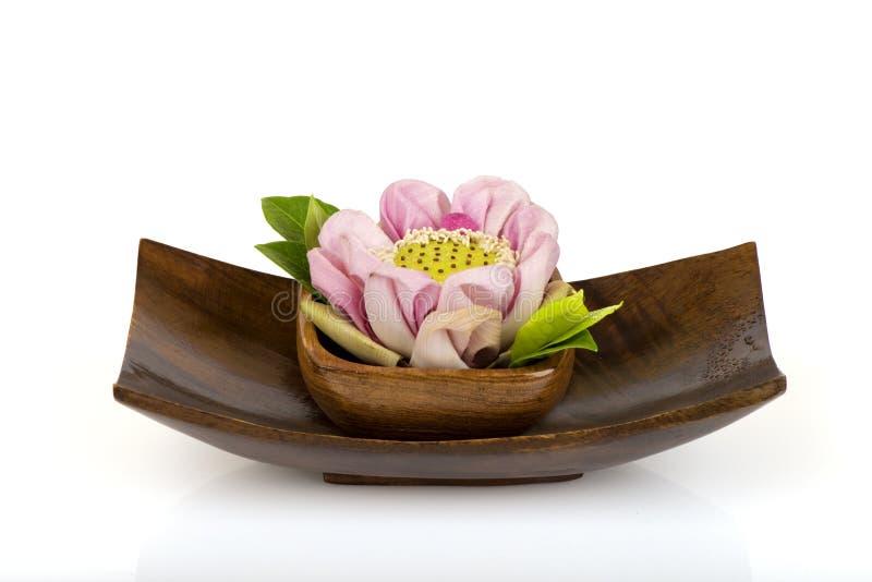 桃红色莲花泰国 库存图片