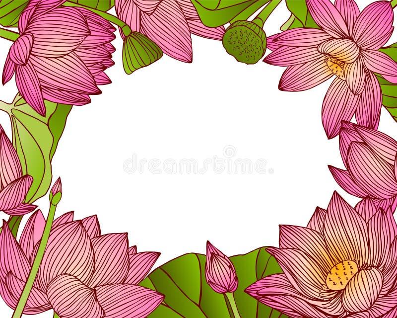 桃红色莲花花卉框架  库存例证