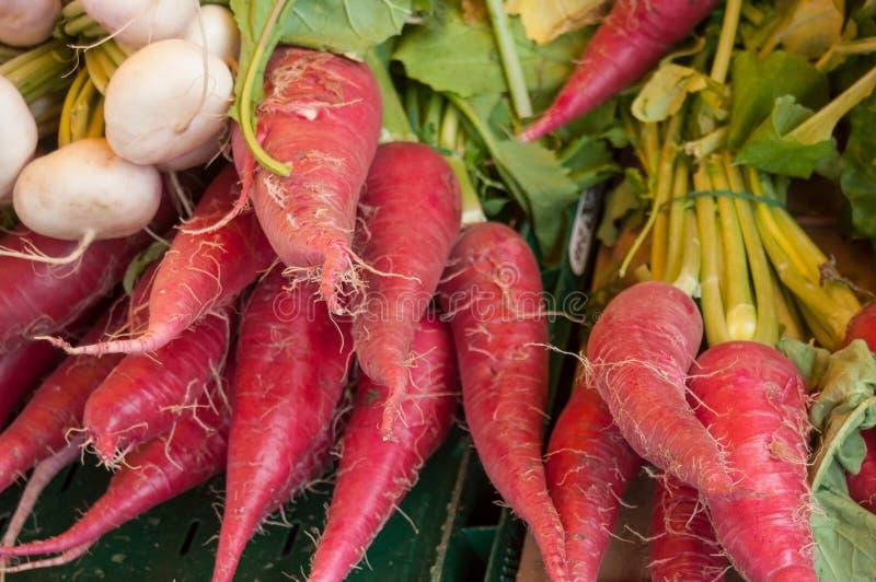 桃红色萝卜在市场上 库存照片