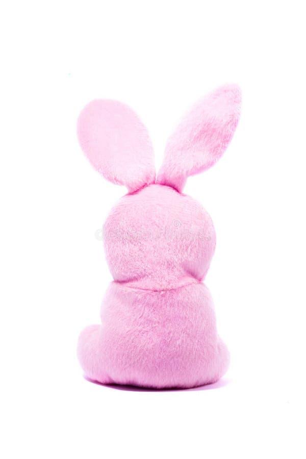 桃红色豪华的兔宝宝转得回去,孤立 免版税图库摄影