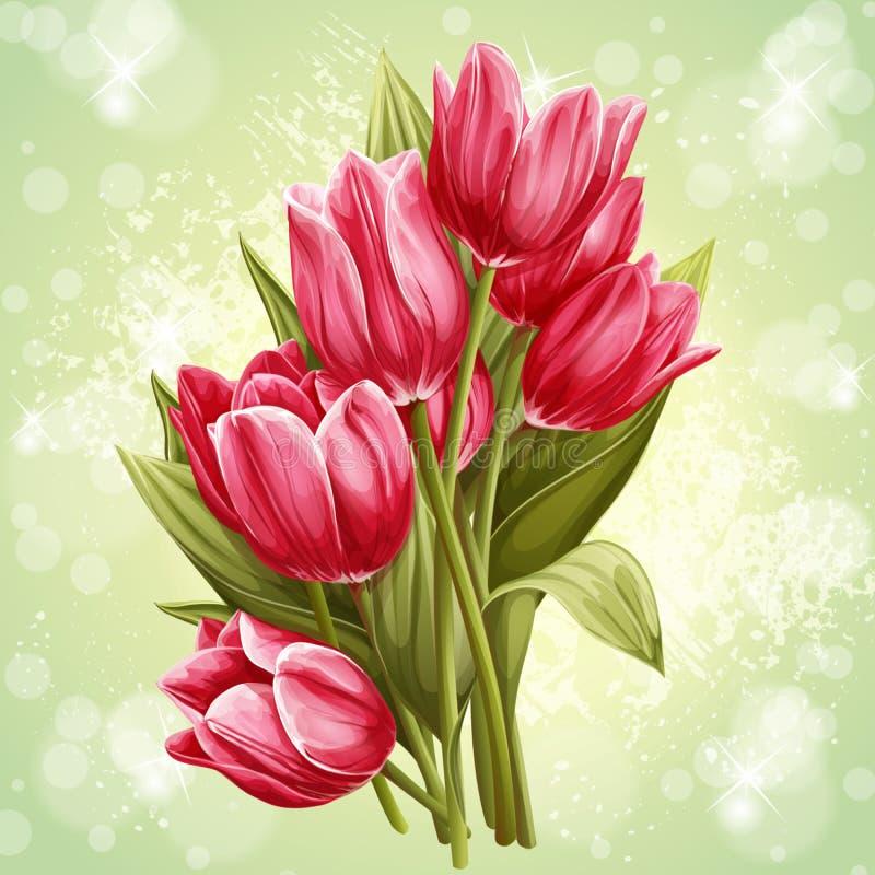 桃红色郁金香花花束的图象  皇族释放例证
