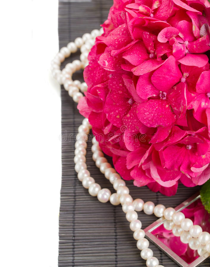 桃红色霍滕西亚花和珍珠关闭  免版税库存照片