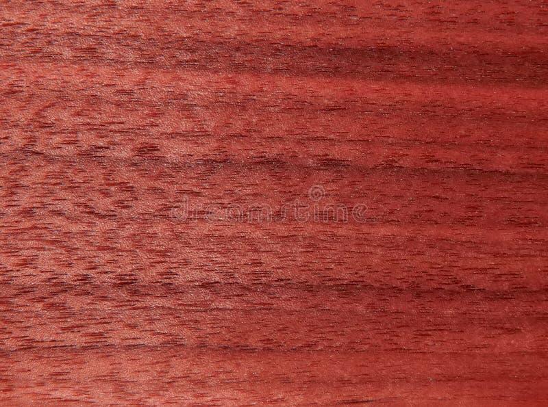 桃花心木木表面的纹理  家具的木表面饰板 免版税图库摄影