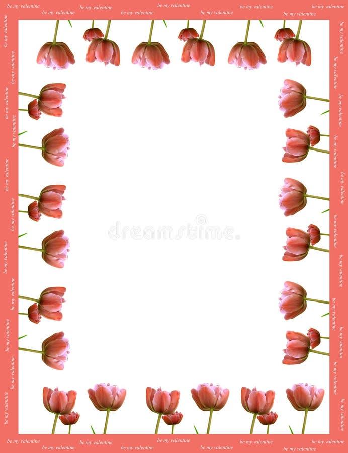 框架做红色郁金香 免版税库存图片