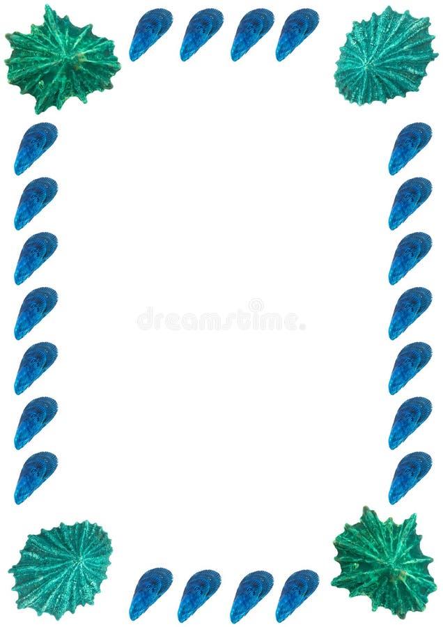 框架照片海运壳 免版税库存图片